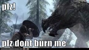 plz!  plz dont burn me