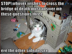 STOP! whover wishes to cross the bridge of death must answer me these questions three  ere the other side he see