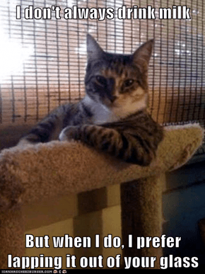 The Most Interesting Cat in the World: And My Head Doesn't Always Get Stuck... Oh Wait, Yes It Does!