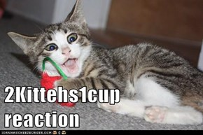 2Kittehs1cup reaction