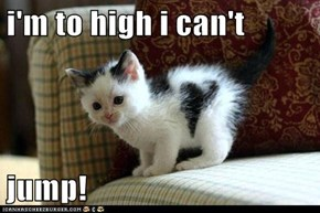 i'm to high i can't  jump!
