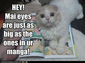 HEY!Mai eyes are just as big as the ones in ur manga!