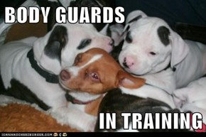 BODY GUARDS  IN TRAINING