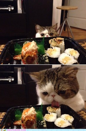 Acting Like Animals: I Claim This Sushi in the Name of ME!
