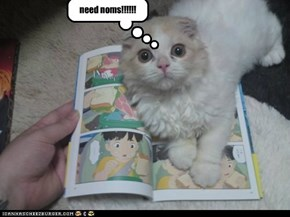 need noms!!!!!!