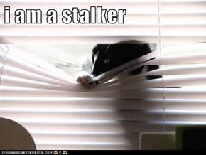 i am a stalker