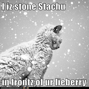 I iz stone Stachu   in frontz of ur lieberry