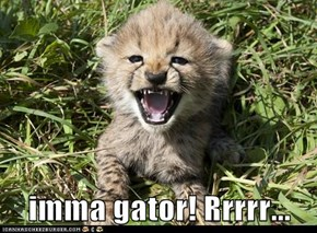 imma gator! Rrrrr...