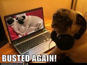BUSTED AGAIN!