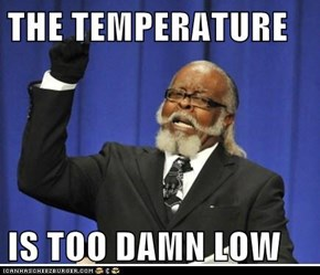 THE TEMPERATURE  IS TOO DAMN LOW