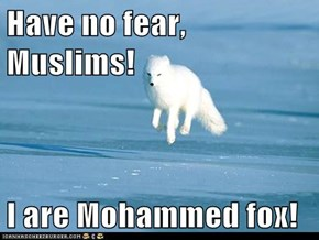 Have no fear, Muslims!  I are Mohammed fox!
