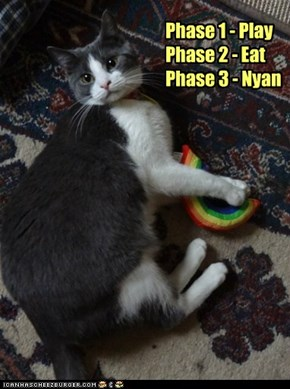 Phase 1 - PlayPhase 2 - EatPhase 3 - Nyan