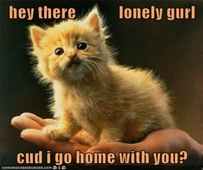 hey there             lonely gurl  cud i go home with you?
