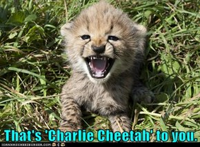 That's 'Charlie Cheetah' to you.