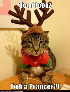 do ai lookz  liek a Prancer?!