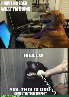 Thank you for calling Geek Dog