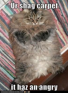 Ur shag carpet