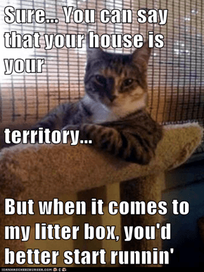 Sure... You can say that your house is your territory... But when it comes to my litter box, you'd better start runnin'