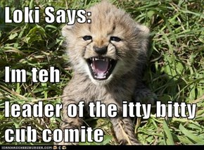Loki Says: Im teh  leader of the itty bitty cub comite