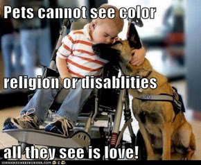 Pets cannot see color religion or disablities all they see is love!