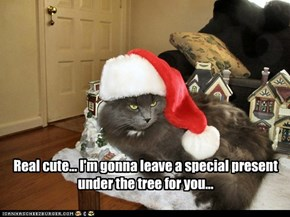 Real cute... I'm gonna leave a special present under the tree for you...