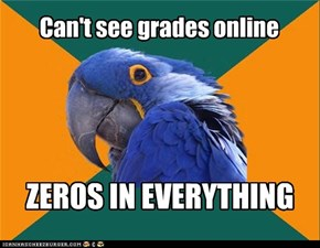 Can't see grades online