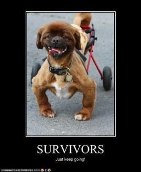 More Survivors...