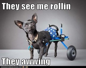 They see me rollin  They awwing