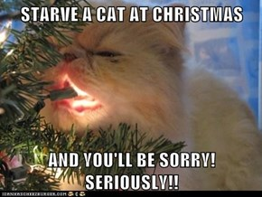 STARVE A CAT AT CHRISTMAS  AND YOU'LL BE SORRY!  SERIOUSLY!!