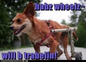 habz wheelz