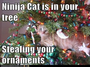 Ninija Cat is in your tree  Stealing your ornaments