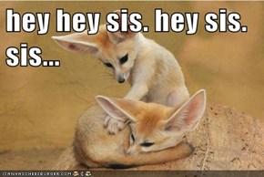 hey hey sis. hey sis. sis...