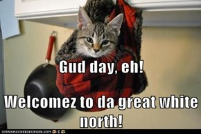 Gud day, eh! Welcomez to da great white north!