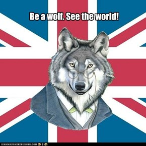 Be a wolf. See the world