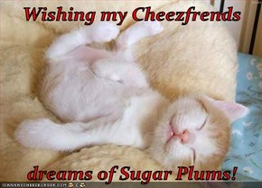 Wishing my Cheezfrends  dreams of Sugar Plums!