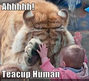 Ahhhhh!  Teacup Human