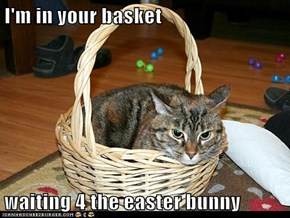 I'm in your basket  waiting 4 the easter bunny