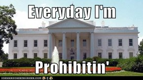 Everyday I'm  Prohibitin'