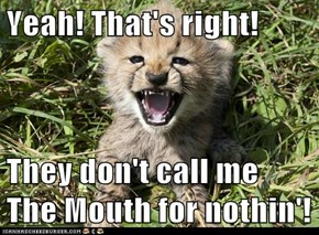 Yeah! That's right!  They don't call me The Mouth for nothin'!