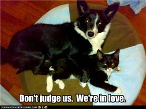 Don't judge us.