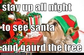 stay up all night to see santa  and gaurd the tree