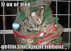Iz on ur tree,  gettin stuck in ur ribbonz