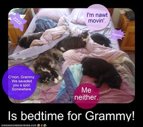 Add a few moar kittehs & this is the way my bed used to look.....