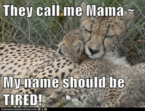 They call me Mama ~  My name should be TIRED!