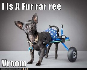 I Is A Fur rar ree  Vroom