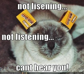 not lisening... not listening... cant hear you!