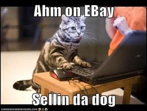 Ahm on EBay   Sellin da dog