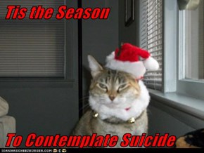 Tis the Season  To Contemplate Suicide