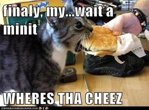 finaly, my...wait a minit  WHERES THA CHEEZ