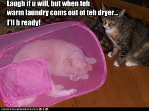 Laugh if u will, but when teh warm laundry coms out of teh dryer...